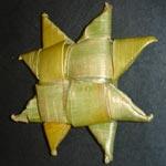 Matariki Star