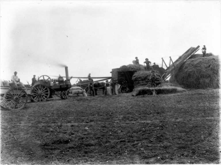 Men working the threshing mill on the Moderate farm, Bennetts district, Canterbury
