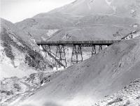 The Sloven's Creek viaduct, near Broken River on the Midland Railway through Arthur's Pass [ca. 1890]