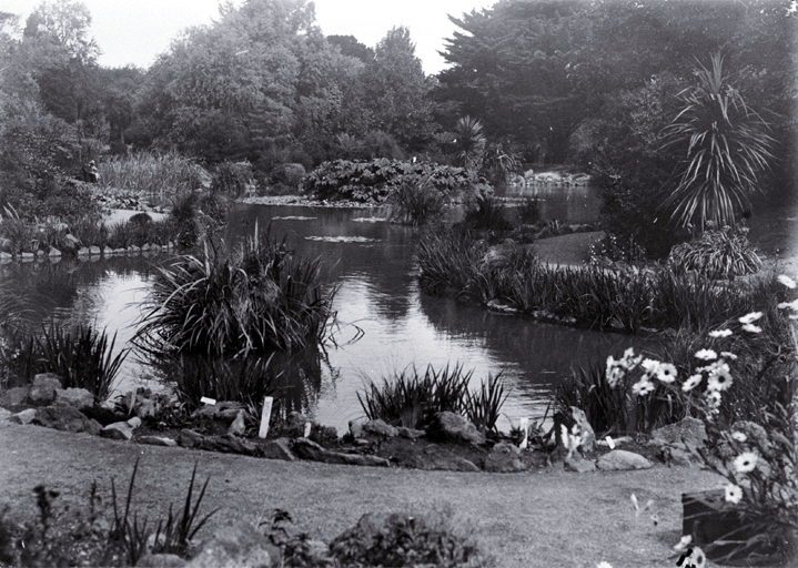 Lily pond in the Christchurch Botanic Gardens