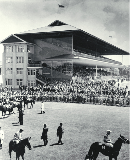 Horses parading in the ring at Riccarton Racecourse [ca. 1960] Flickr CCL PhotoCD 11, IMG0030