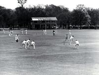 Two cricket matches under way in Hagley Park [ca. 1960]