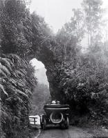 A Model T Ford (Tin Lizzie) travelling under a rock arch in the Buller Gorge, Westland