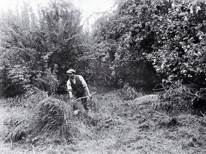 A gardener working in the Millbrook Reserve in the late 1920s