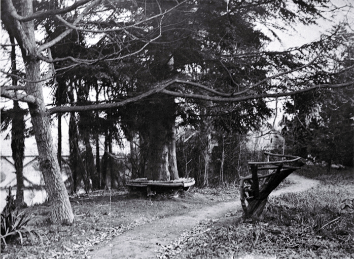 Improvements in the Millbrook Reserve as the result of the work of Richard Bedward Owen (1873-1948)