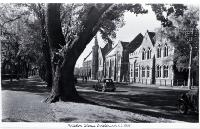 Rolleston Avenue : with Canterbury University College on the right. [195-?]