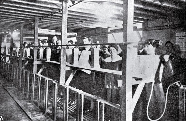 1918 influenza EPIDEMIC !!!!!!! help PLZ!!!?