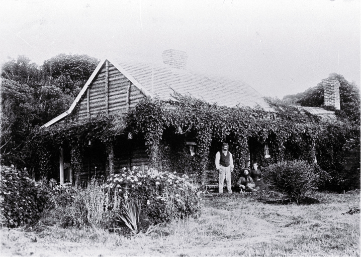 Punga or tree fern house used by the maori and moriori of