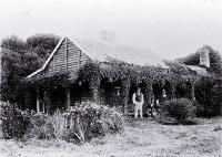 Punga or tree-fern house used by the Maori and Moriori of the Chatham Islands [ca. 1890]