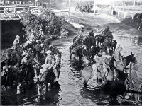 Troops watering horses in the Avon River near Carlton Bridge, Christchurch