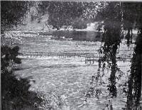 A pa tuna, or eel weir, on the upper reaches of the Wanganui River