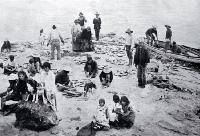A Maori fishing party in far north