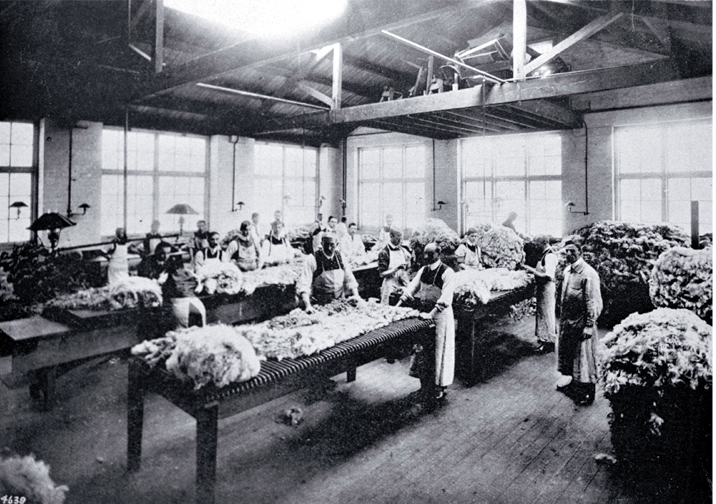 There was a demand for the wool classing classes provided by the Christchurch Technical College