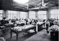 There was a demand for the wool classing classes provided by the Christchurch Technical College [1910]