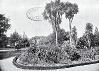 Christchurch Domain : a portion of the garden.
