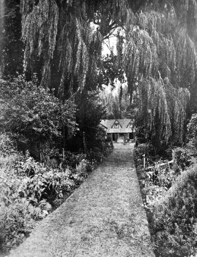 The path leading to Sir John Hall's house at Hororata.