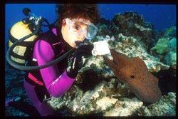 Angie Belcher underwater