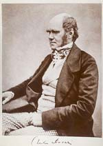 Charles Darwin seated - from Wikimedia Commons