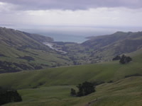 Okains Bay