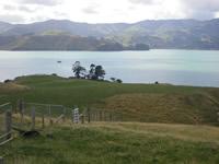 Ōpukutahi Reserve