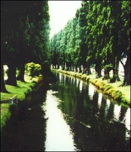 Ōtākaro: the Avon river