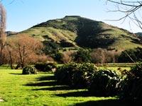Te Ūpoko o Tahumatā from the Wairewa Marae grounds.