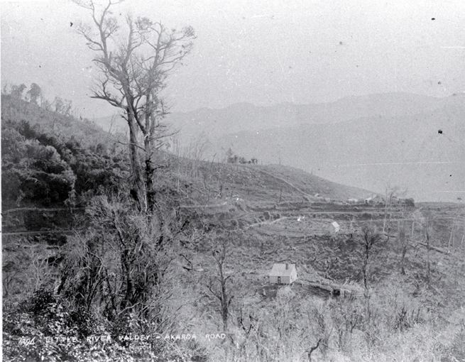 The settlement and Akaroa road in Little River Valley past Lake Forsyth, the main entrance to Banks Peninsula