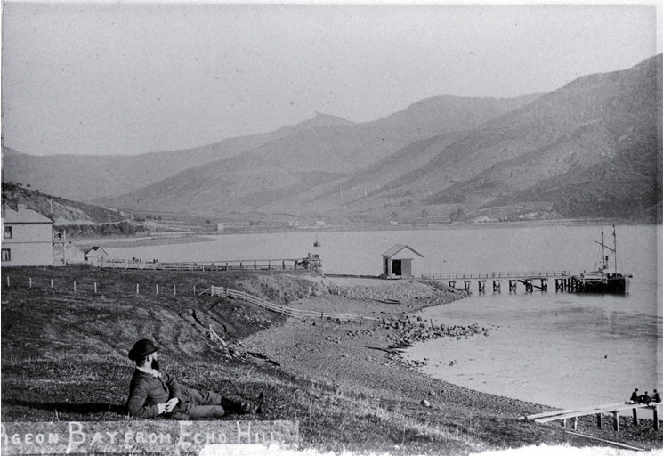 Pigeon Bay, Banks Peninsula, from Echo Hill
