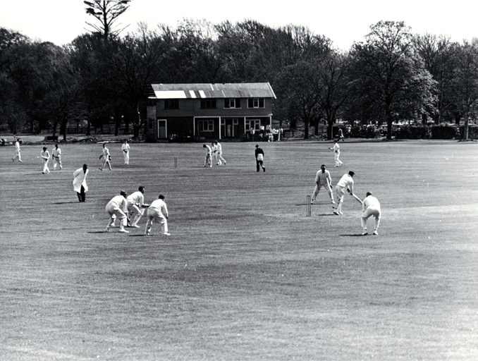 Cricket matches in Hagley Park.