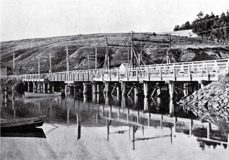 The old Ferry Bridge, soon before removal from over the Heathcote River, Christchurch