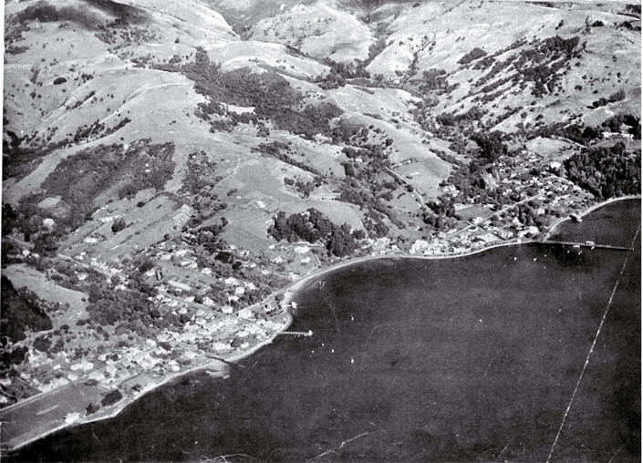Aerial view of Akaroa and harbour